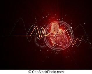 3d rendered medical illustration of a human heart