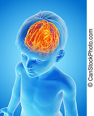 a childs brain - 3d rendered medically accurate illustration...