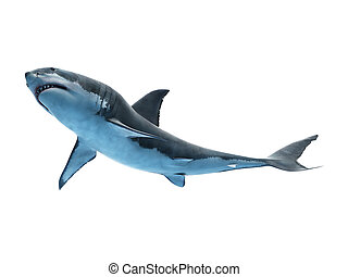 a great white shark - 3d rendered medically accurate ...