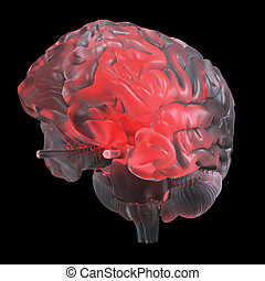 a red glowing glass brain