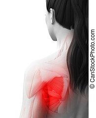 a woman having a painful shoulder