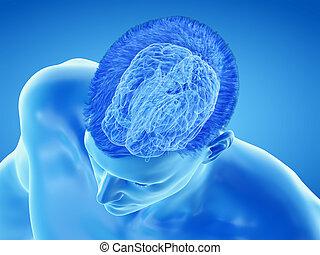 the brain anatomy - the cortex - 3d rendered medically ...