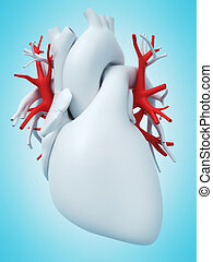 the pulmonary veins - 3d rendered medically accurate ...