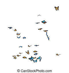 3D Rendering Butterflies on White