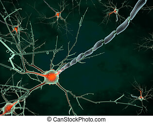 Cell body of a neuron long shot - 3d rendering Cell body of...