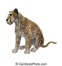 3D Rendering Cheetah on White
