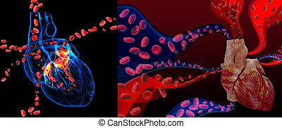 3d rendering Heart valve with blood cells