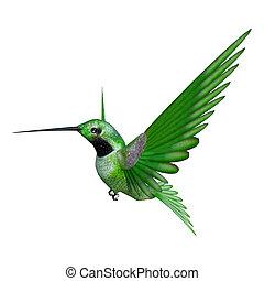 3D Rendering Hummingbird on White