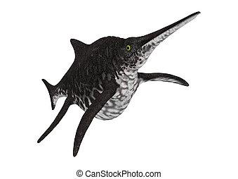 3D Rendering Ichthyosaur Shonisaurus on White