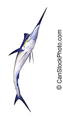 3D Rendering Marlin Fish on White