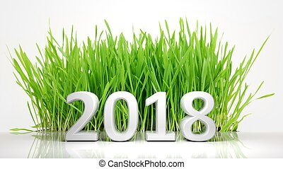 3D rendering of 2018 with green grass