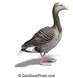 grey goose - 3D rendering of a grey goose with clipping path...