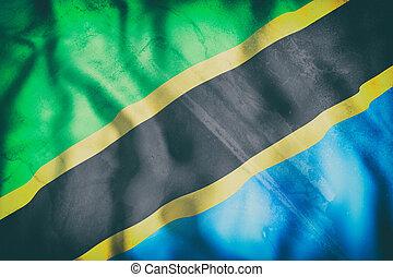 Tanzania flag waving