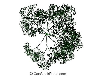 3d rendering of an outlined black tree with green edges isolated on white background