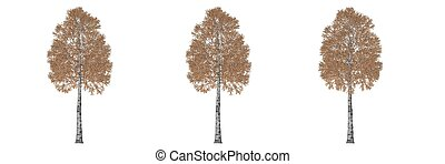 3d rendering of three trees isolated on white