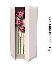 3D Rendering Roses in Box on White