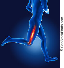 3D running medical man with thigh bone highlighted