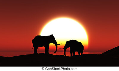 3D silhouettes of elephants against a sunset sky