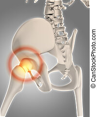 3D skeleton with hip highlighted