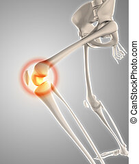 3D skeleton with knee highlighted