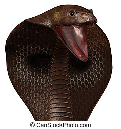 3D snake cobra isolated on a white - snake cobra in 3D...