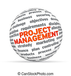 3D sphere with the word Project Management on white background.