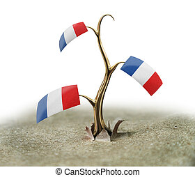 3d sprout with French flag on white
