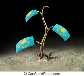 3d sprout with Kazakh flag on black