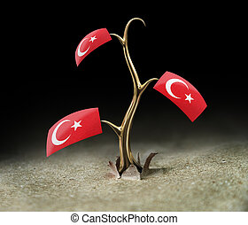 3d sprout with Turkish flag on black