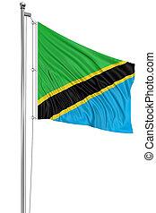 3D Tanzania flag