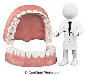 3D white people. Professor showing a denture