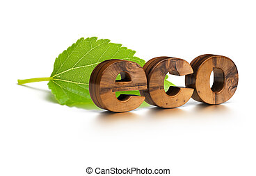 3D wooden eco word and green leaf over a white background