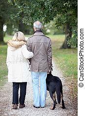 3º edad, caminata, teniendo, perro, gente