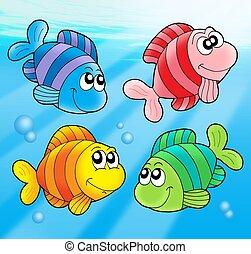 4, かわいい, 魚