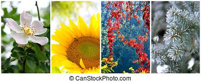 4, 冬, 春, seasons:, 秋, 夏