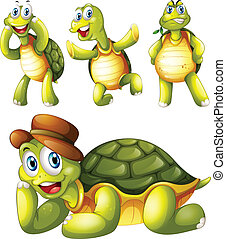 4, 쾌활한, 거북