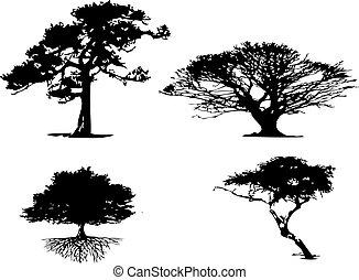 4 different types of tree silhouett