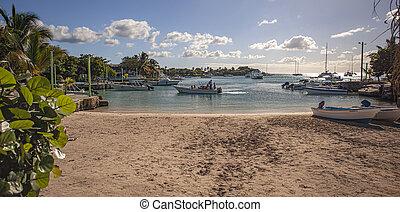 4, entiers, touristes, catamaran, arrive, plage