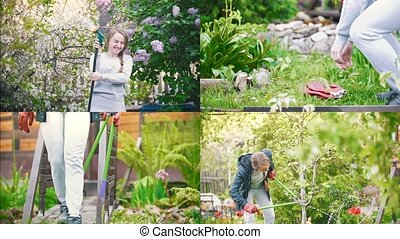 4 in 1: young pretty woman working in garden. spraying water...