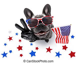 4 juillet, chien, jour indépendance