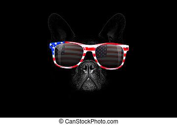 4 juillet, indépendance, chien, jour