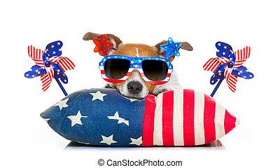 4 luglio, cane, giorno indipendenza