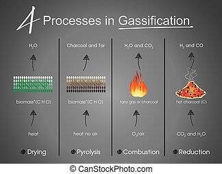 processes in Gasification Drying, Pyrolysis, Combustion, Reduction. Info graphic vector.