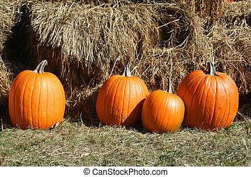 4 pumpkins in grass near hay bales