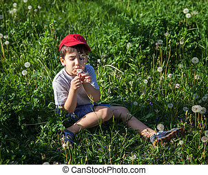 boy sitting in grass and blowing a dandelion
