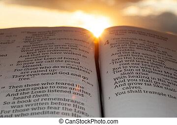 4:2., 日没, 太陽, malachi, 開いた, ハイライト, 雲, 聖書, 背景