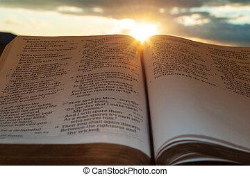4:2., 日没, 打撃, 太陽, malachi, clouds., 開いた, ハイライト, 神聖, 横, 聖書, 背景