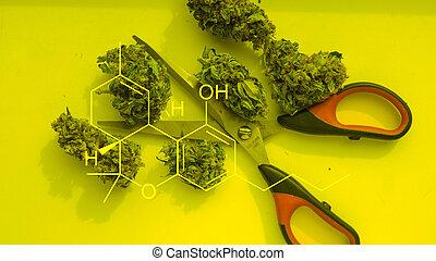 420, marijuana, cultura