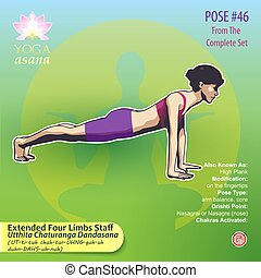 46 Extended Four Limbs Staff Pose