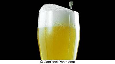 4k, ömlött, ellen, fekete, sör, háttér, pohár